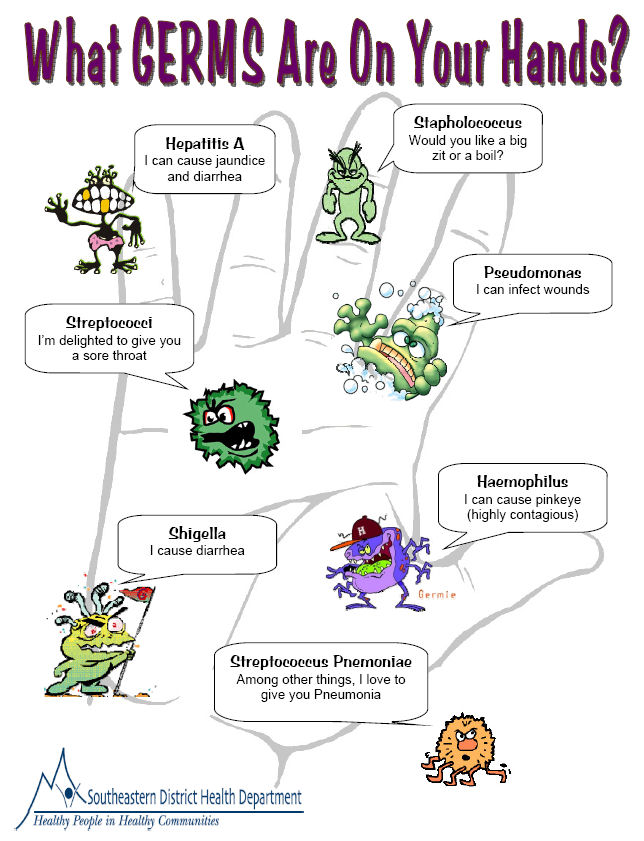 More information about germs germs what germs are on your hands